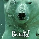 Be wild - Polar bear by garigots