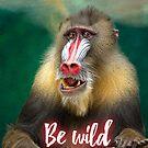 Be wild - Mandril by garigots