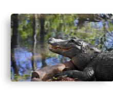 Florida - Where the Alligator smiles Canvas Print
