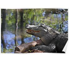 Florida - Where the Alligator smiles Poster