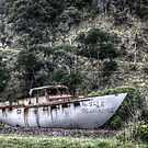 Big Boat For Sale by coffeebean