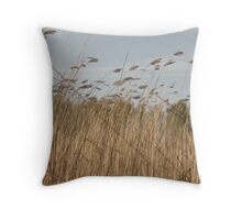 Dry cattail swing in wind Throw Pillow