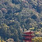 Pagoda In The Woods by phil decocco