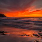 Red Dawn. by Warren  Patten