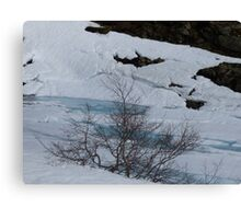Winter snow thawing showing blue water Canvas Print