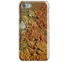 Old Bench Seat iPhone Case/Skin