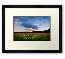 Close Encounters of the Earth Kind Framed Print