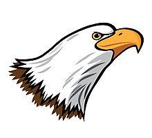 Bald Eagle Mascot Photographic Print