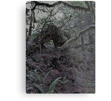 Creepy Forest Metal Print