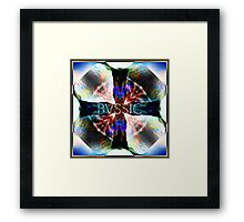 BVSSIC Crossing Nature Lines Framed Print
