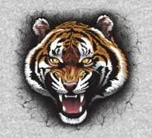 The Tiger Roar Kids Clothes
