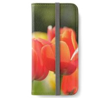 Red Tulips (Art Photo)  iPhone Wallet/Case/Skin