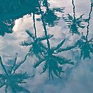 Reflection of Palms by John Butler