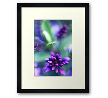 Caught on the breeze Framed Print