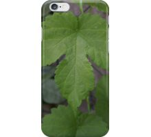 Hops, iPhone Case/Skin