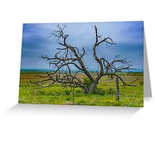 Dying Tree Greeting Card