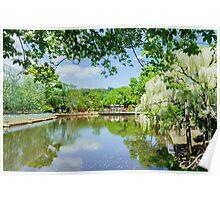 Lovely lake in Spring Poster