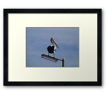 'HAS THAT DOG GONE YET'!  Henley Beach Jetty, Adelaide. S.A. Framed Print