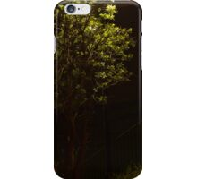 Backlit Tree iPhone Case/Skin