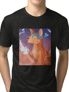 sunset the cat Tri-blend T-Shirt