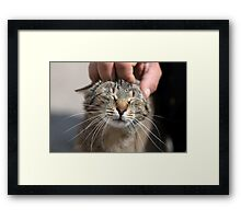 Human Touch Framed Print