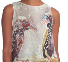 Painted Finches Contrast Tank