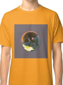 Pond In Globe Classic T-Shirt