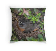 mother robin on nest Throw Pillow