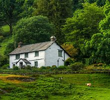 The House at Loughrigg Tarn by WillBov