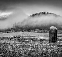 Fog Lifting Off Of The Farm Field 1 by Thomas Young