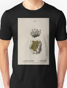 Wayside and woodland blossoms a pocket guide to British wild flowers for the country rambler  by Edward Step 1895 126 Scarket Cyo Niss Wall Lichen T-Shirt