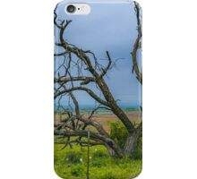 Dying Tree iPhone Case/Skin