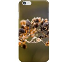 Minus 4 Degree C Early Morning Excursion (9) iPhone Case/Skin