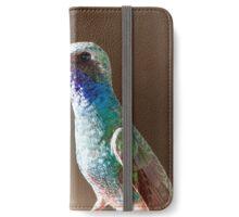 broad billed hummingbird iPhone Wallet/Case/Skin