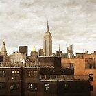 Metropolis by David Lamb