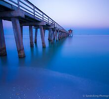 NAPLES PIER BLUE by George Trimmer