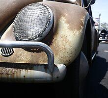 Rust Bug by williamsrdan
