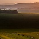 View from Jugg's Road on the South Downs by Chester Tugwell
