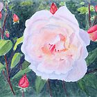 English Rose, by John Rees by HurstPainters