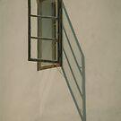 Window by Hudolin