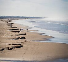 Winter Beach by williamsrdan