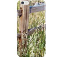 Golden Fence iPhone Case/Skin