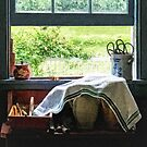 View From Kitchen Window by Susan Savad