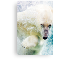 Polar Bear In Water Canvas Print