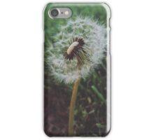 Sidewalk Flower iPhone Case/Skin