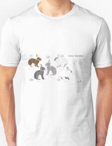 Rabbit Colour Genetics - Saturation Gene Unisex T-Shirt