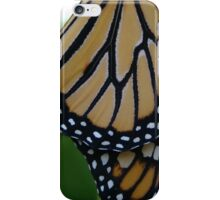 Charlie - Monarch Butterfly iPhone Case/Skin
