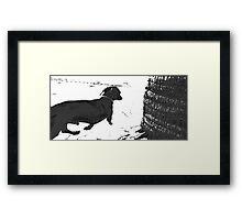 Reservoir Dawg Framed Print