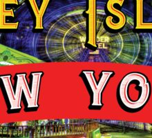 CONEY ISLAND NEW YORK WONDER WHEEL  AMUSEMENT PARKS NY FERRIS WHEEL Sticker