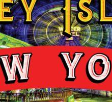 CONEY ISLAND NEW YORK WONDER WHEEL  AMUSEMENT PARKS NY FERRIS WHEEL Sticker